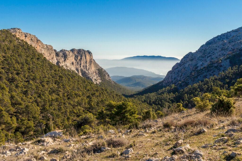 Sierra Espuña Natural Park, Spain.