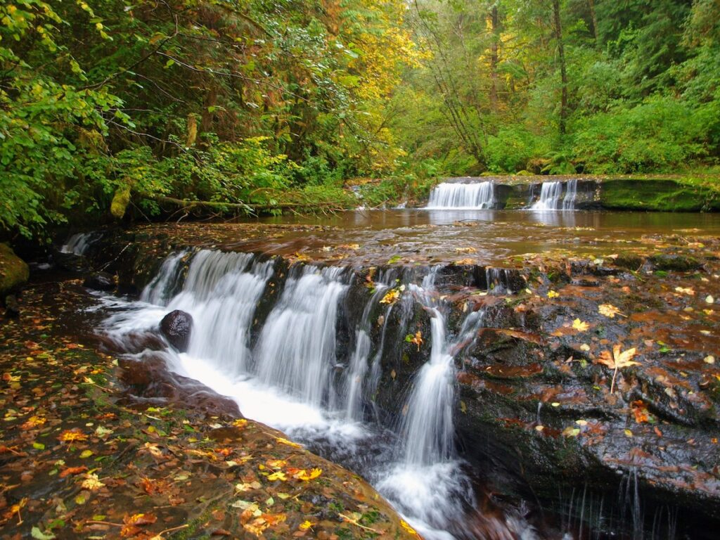 Sweet Creek Falls near Mapleton, Oregon