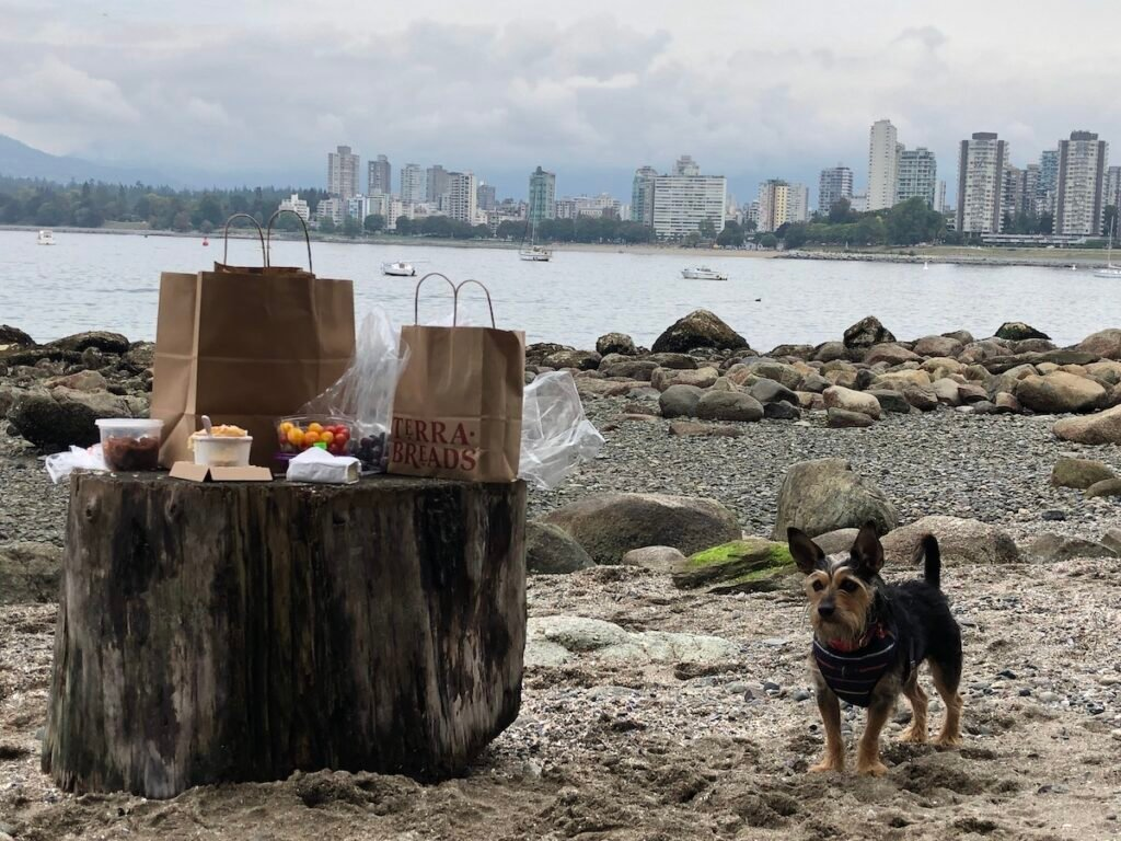 Lunch at Kitsilano Beach in Vancouver