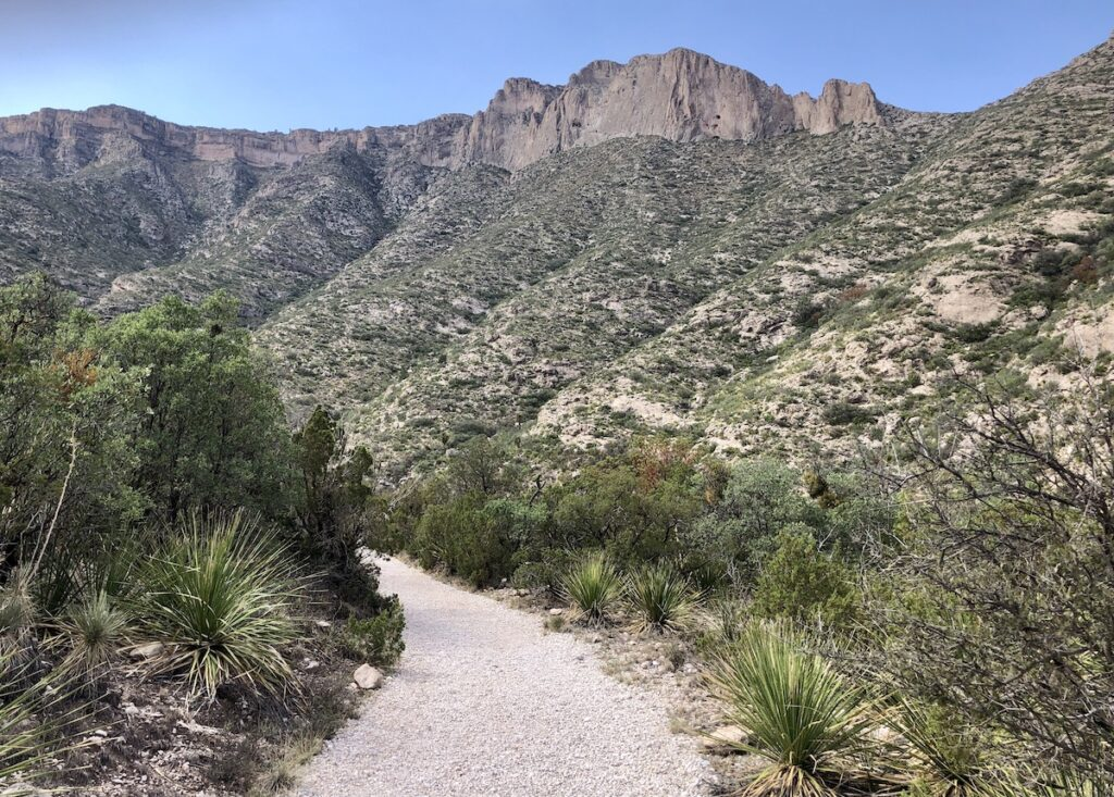 McKittrick Canyon view trail and landscape.