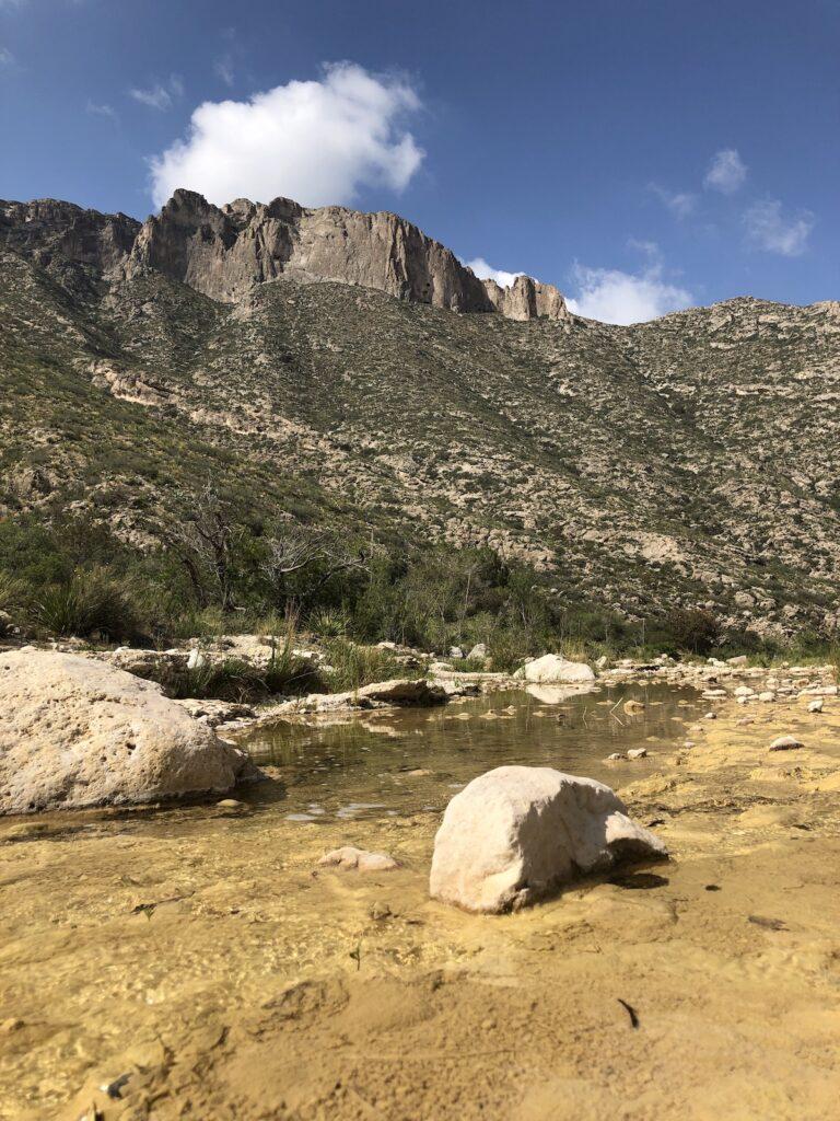 McKittrick Canyon creek