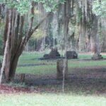 An eerie cemetery at Old Cahaba Archaeological Park in Orville, AL.