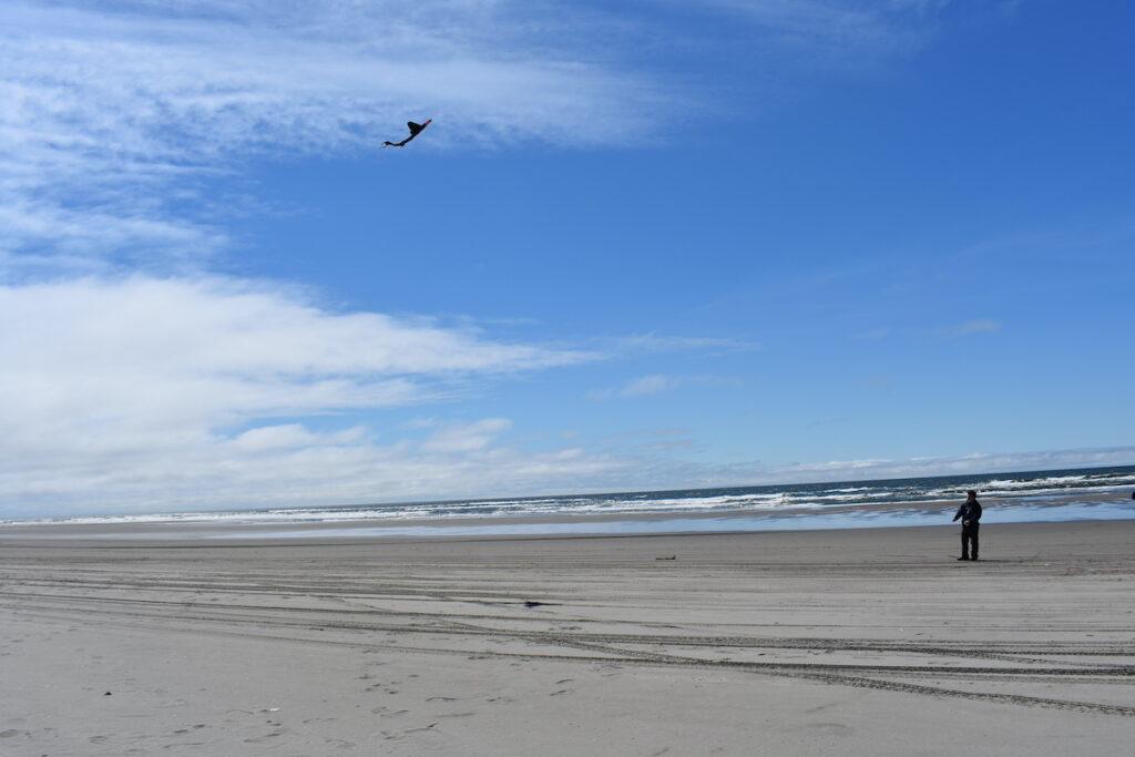 Long Beach, kite on a blue sky day.
