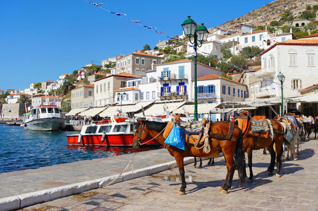 Mules waiting at the water's edge in Hydra, Greece