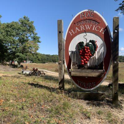 Cranberry Bog Tours.