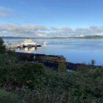 Views from Washington State.