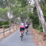 Riders on the Tour de Pink bike race