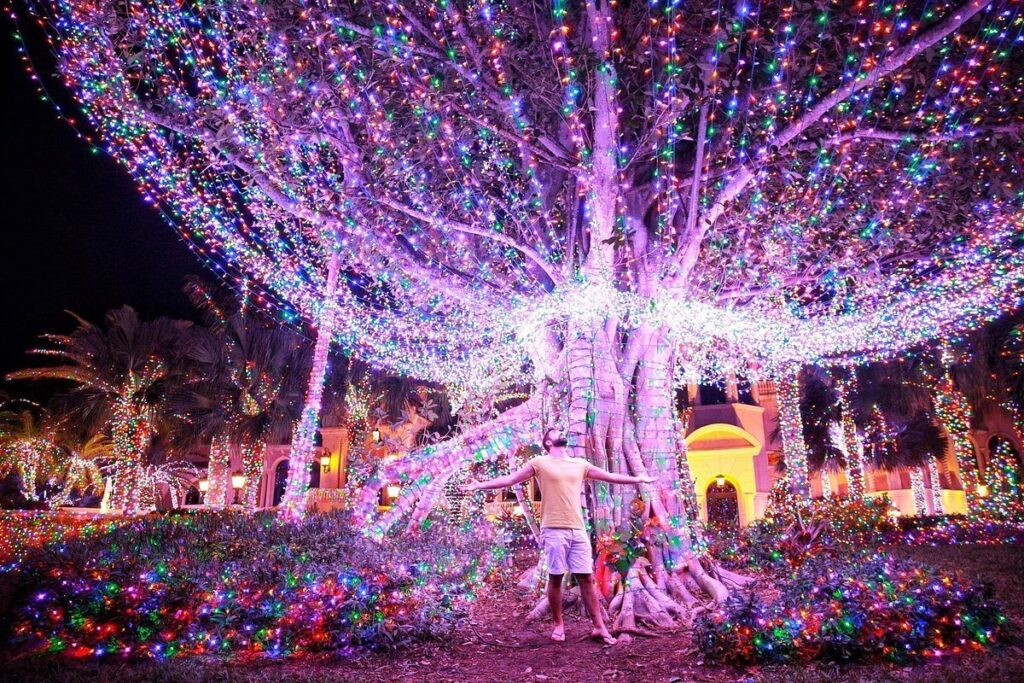 The man stands with his arms outstretched under a large tree filled with many Christmas lights at Stuart Beach.