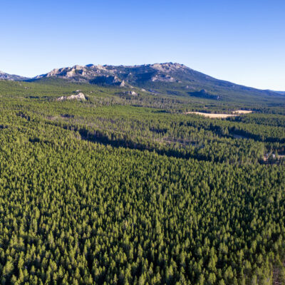 Bighorn National Forest in Wyoming.