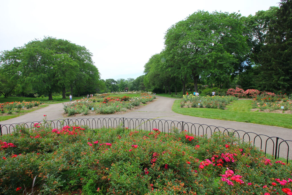 Rose Park in Columbus, Ohio.  Great for picnics and other outdoor activities in Columbus, Ohio.