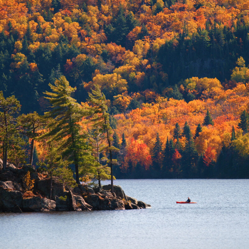 Kayaking in Algonquin Provincial park, Ontario, Canada.