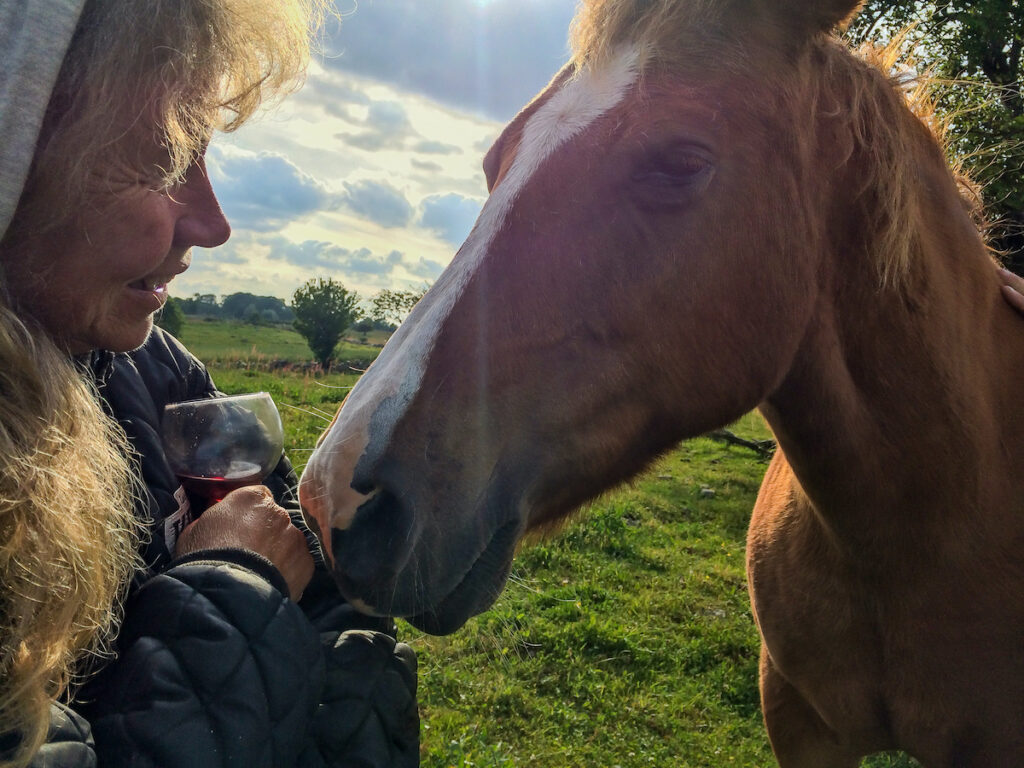 Smiling older woman with glass of wine next to a brown horse.