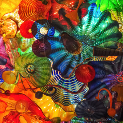 Image filling colorful view of glass blown flower ceiling by Dale Chihuly.