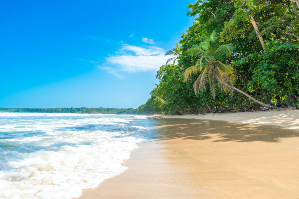 Cahuita, National Park with beautiful beaches coast of Costa Rica.